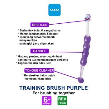 MAM Training Brush 6 Plus Months - Sikat Gigi Bayi - Purple harga terbaik 62727