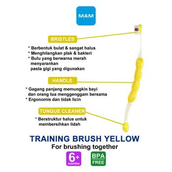 MAM Training Brush 6 Plus Months - Sikat Gigi Bayi - Yellow harga terbaik 62727