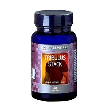 Wellness Tribulus Stack  harga terbaik