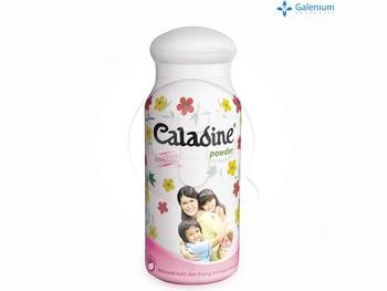 Caladine Powder - Active Fresh 220 g harga terbaik 29100