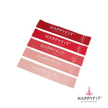Happyfit Resistance Loop Band Set  harga terbaik 150000