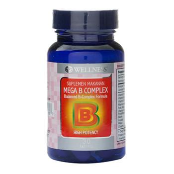 Wellness Mega B Complex Tablet  harga terbaik 200000