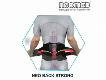 Neomed Back Strong 8.5' Body Support JC-B-8100 harga terbaik 673000