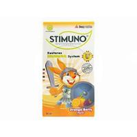Stimuno Orange Berry Sirup 60 mL