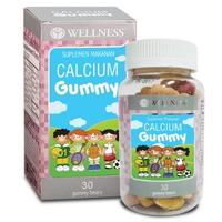 Wellness Gummy Kids (30 Gummy)