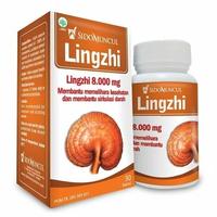 Lingzhi sidomuncul 8000 mg (1 pack isi 30 kapsul)