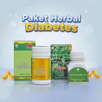 Herbamed Paket Bundling Obat Herbal Diabetes Diabolin Promelin