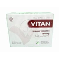 Vitan Tablet 250 mg (1 Strip @ 4 Tablet)