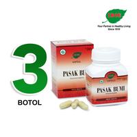Jamu IBOE - 3 Botol Pasak Bumi Herbal Supplement 30 Kapsul