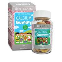 Wellness Calcium Gummy (70 Gummy)