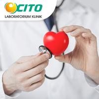 Panel Penyakit Jantung Koroner - Laboratorium Klinik Cito Jayapura