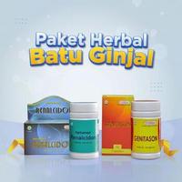 Herbamed Paket Bundling Obat Herbal Batu Ginjal Batu Empedu Renalcidon Genitason