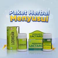 Herbamed Paket Bundling Obat Herbal ASI Booster Ibu Menyusui Lactaron Loewidan