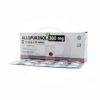 Allopurinol Hexpharm 300 mg (10 Strip @ 10 Tablet)