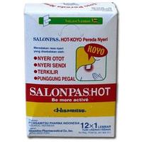 Salonpas Koyo Hot (12 x 1 Pcs)