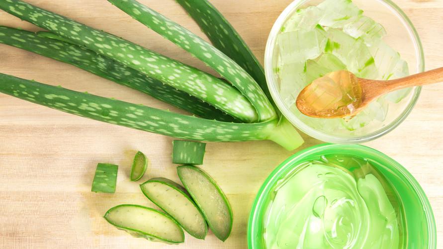 Banyak rekomendasi produk aloe vera gel terbaik yang menarik dicoba