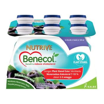 Nutrive Benecol Blackcurrent 6 x 100 ml harga terbaik 42000